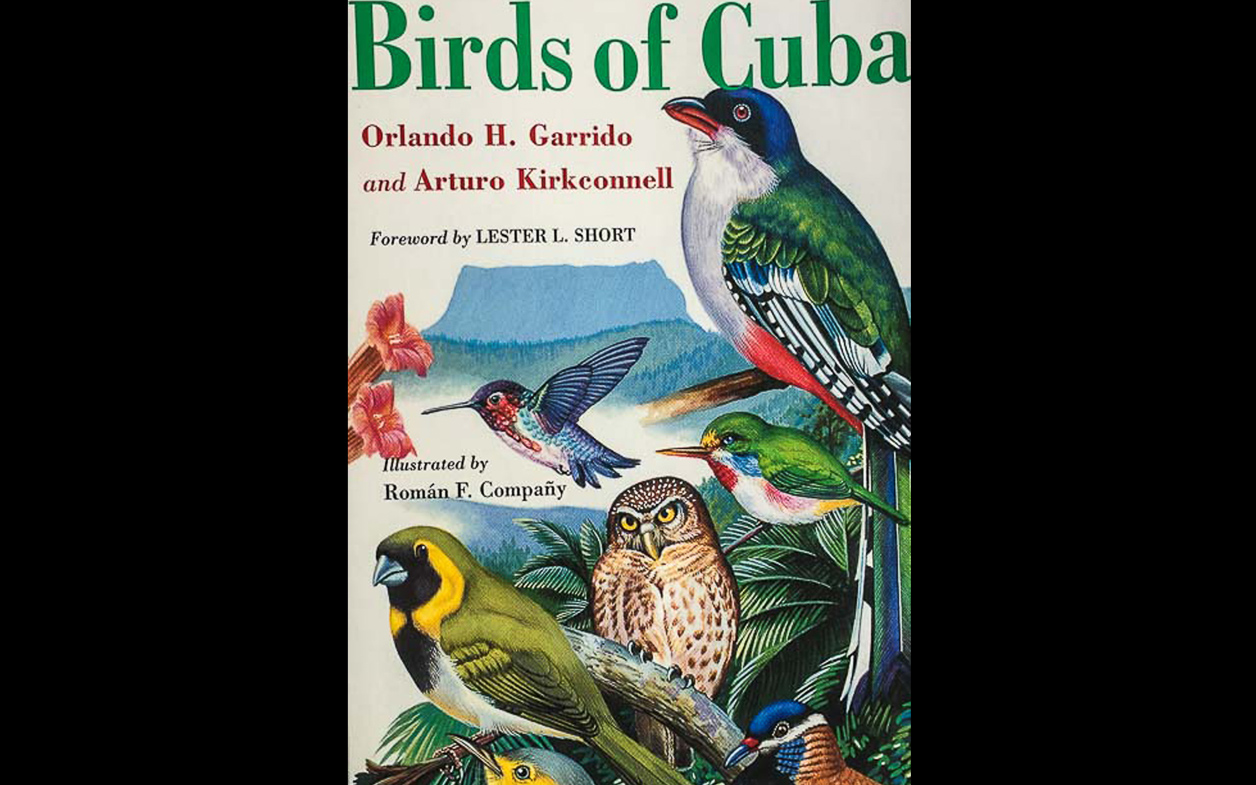 Go birdwatching with a Birdingpal from Bahamas.